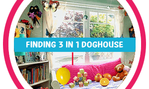 Finding3in1 DogHouse