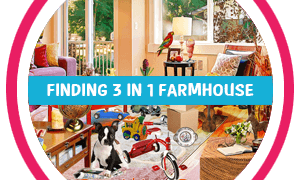 Finding3in1 Farmhouse