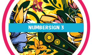 NumberSign 3